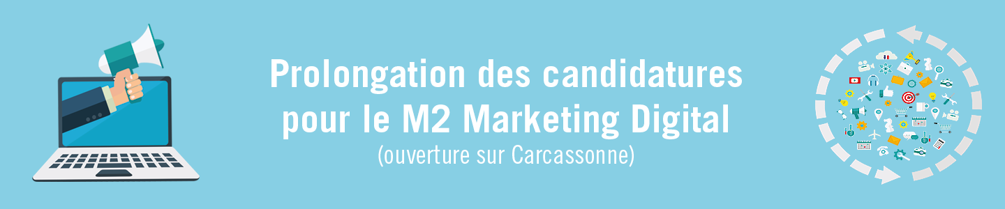 candidature marketing digital