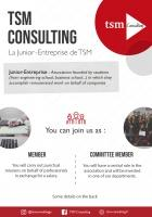 flyer TSM Consulting